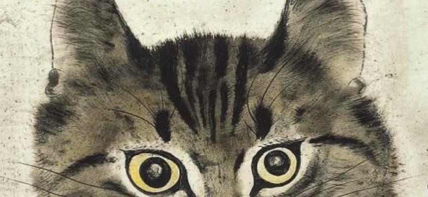 el gato que venia del cielo